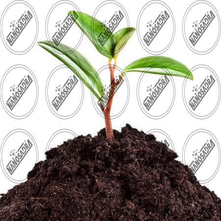 bio fertilizer manufacturers in india | Cheapest bio fertilizer products for sale