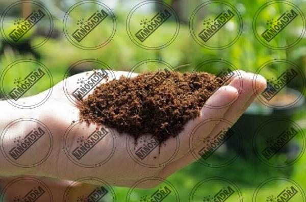 All about nano fertilizers and their different types