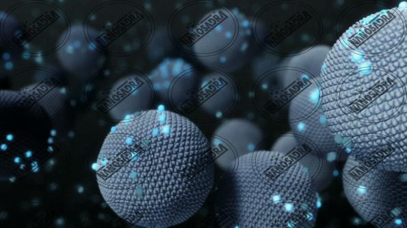 Wholesale price of nanotechnology companies in Asia