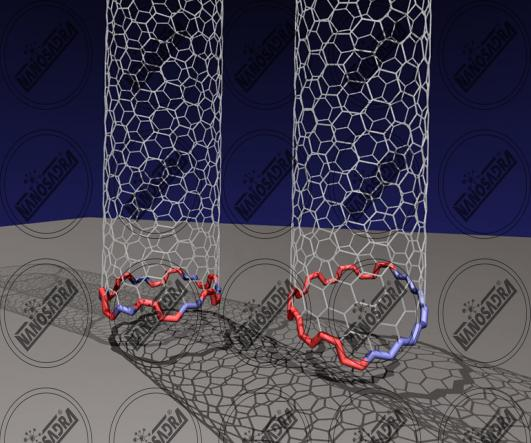 Best nanotubes for sale
